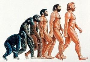 """""""Thuyết tiến hóa"""" của Darwin đã vấp phải sự định kiến của Công Giáo """"Chúa tạo ra muôn loại"""